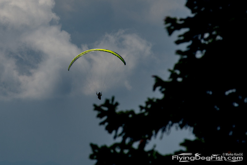 Monster about to flick a paraglider