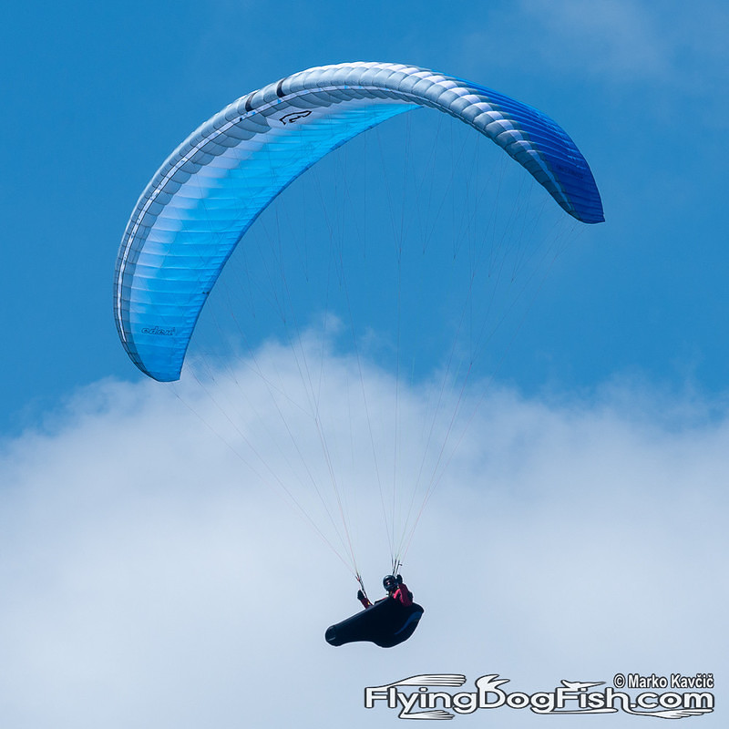 Paraglider  over cloud