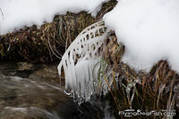 Icicles above stream